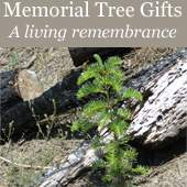 Trees for a Change - Memorial Tree Sympathy and Condolence Gift